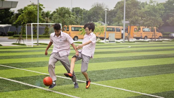 Football pitch3