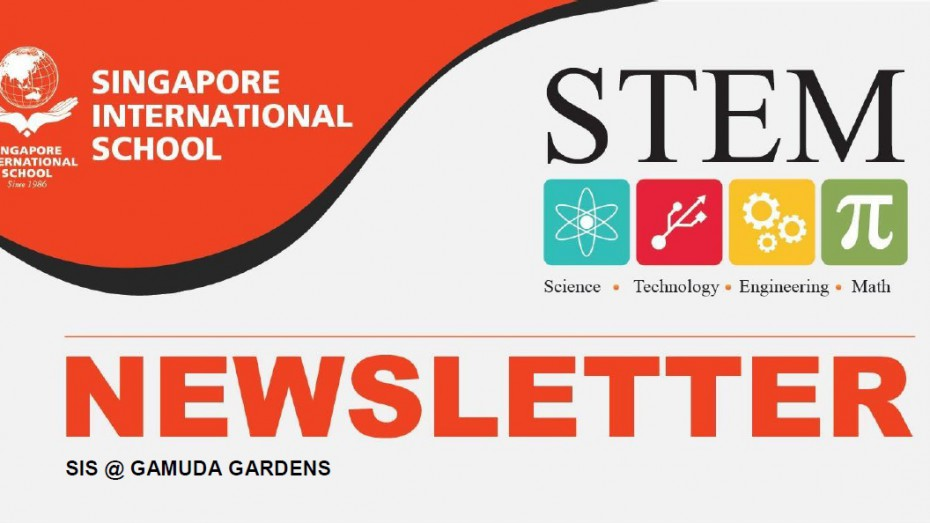 Stem Newsletter icon
